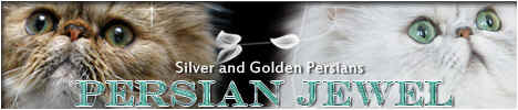 Persian_Jewel_Banner[1]